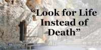 Look for Life Instead of Death